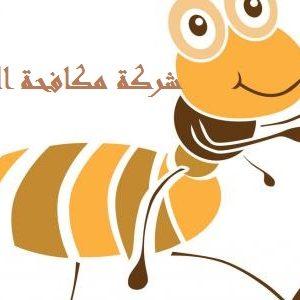 شركة مكافحة النمل بالطائف